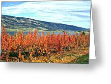 Autumn Cherry Orchard Greeting Card