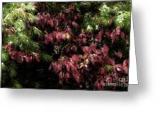 Autumn Chill Greeting Card