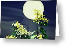 Autumn Chrysanthemums 2 Greeting Card