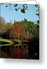 Autumn Color Reflected Greeting Card