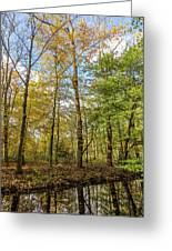 Autumn Color Reflections Greeting Card