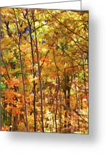 Autumn Colored Greeting Card