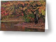 Autumn Colors By The Pond Greeting Card
