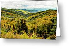 Autumn Colors In The Smokies Greeting Card