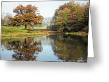 Autumn Colours - Somerset Greeting Card