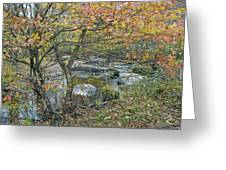 Autumn Comes To The Unami Creek Greeting Card