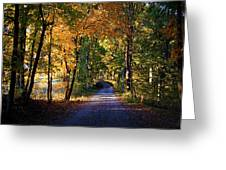 Autumn Country Lane Greeting Card