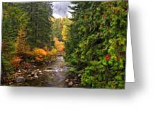 Autumn Creations Greeting Card