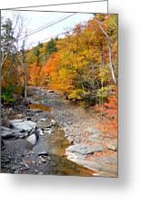 Autumn Creek 3 Greeting Card