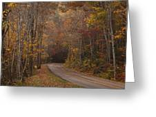 Autumn Drive Greeting Card