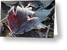 Autumn Ends, Winter Begins 2 Greeting Card