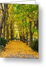 Autumn Entrance 2 Greeting Card