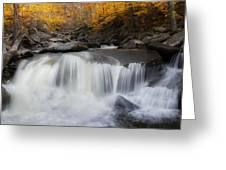 Autumn Falling Square Greeting Card
