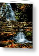 Autumn Falls - 2885 Greeting Card