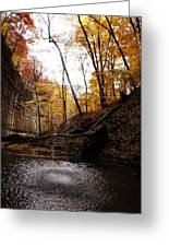 Autumn Falls IIi Greeting Card