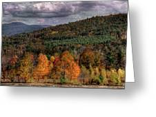 Autumn Fencerow Greeting Card