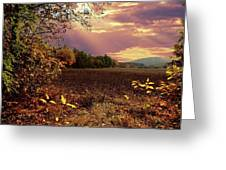 Autumn Fields Greeting Card