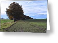 Autumn Fields, Syke, Germany Greeting Card