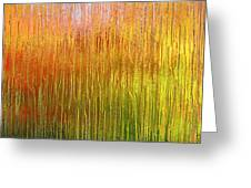Autumn Fire Abstract Greeting Card