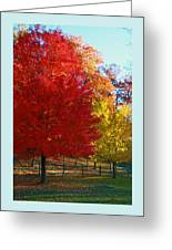 Autumn Fire  In  Red  And  Gold Greeting Card
