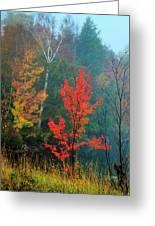 Autumn Fire Greeting Card