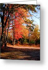 Autumn Flame Greeting Card