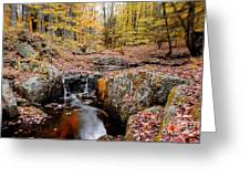 Autumn Flow Greeting Card