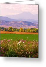 Autumn Flowers At Harvest Time Greeting Card