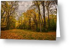 Autumn Forest Greeting Card by Stuart Deacon