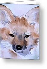 Autumn Fox Greeting Card
