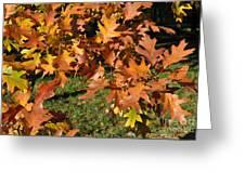 Autumn Fragrance Greeting Card