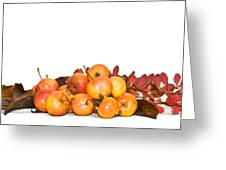 Autumn Friuts And Leaves Greeting Card