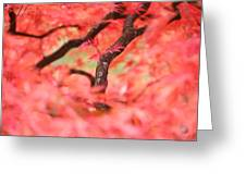 Autumn From Within Greeting Card