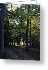 Autumn Glen Greeting Card