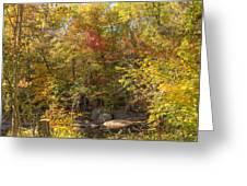Autumn Glory - Unami Creek Sumneytown Pennsylvania Usa Greeting Card