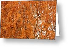 Autumn Gold Greeting Card