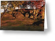 Autumn Grove Greeting Card