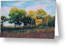 Autumn Grove Greeting Card