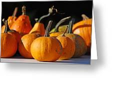 Autumn Harvest Gourds Greeting Card