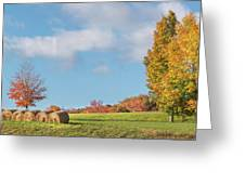 Autumn Hay Square Greeting Card