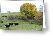 Autumn Herd Greeting Card