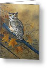 Autumn Highlights - Great Horned Owl Greeting Card