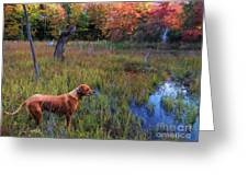 Autumn Hunt Greeting Card