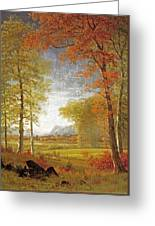 Autumn In America Greeting Card