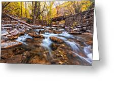 Autumn In American Fork Canyon Greeting Card