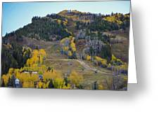 Autumn In Aspen Greeting Card