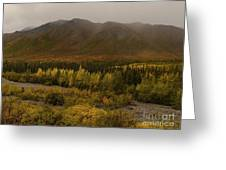Autumn In August Brooks Range Alaska Greeting Card