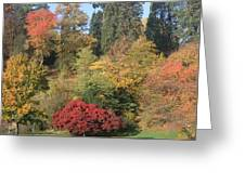 Autumn In Baden Baden Greeting Card