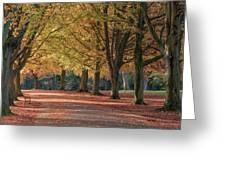 Autumn In Clifton, Bristol Greeting Card