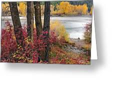 Autumn In East Idaho Greeting Card
